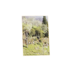 a-15-x-10cm-postcard-from-a-straw-apiary