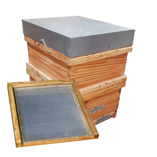 langstroth-hive-liens-transhumance-antivarroa