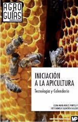 initiation-lapiculture-technologie-et-calendri