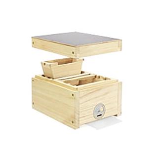 fecondazione-nucleo-regine-legno-tipo-2
