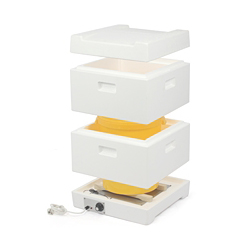 hot-chamber-hive-cubes-of-25-or-40kg-honey