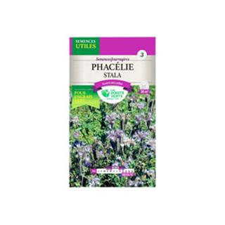 phacelia-tanacetifolia-seeds-500-gr