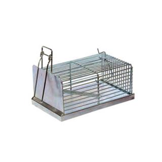 trappola-per-topi-caprifoglio-e-apiario