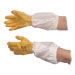 Economical nitrile glove.